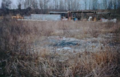 L'ex cava Piccinelli nel 1993 (licenza Creative Commons 2.5)